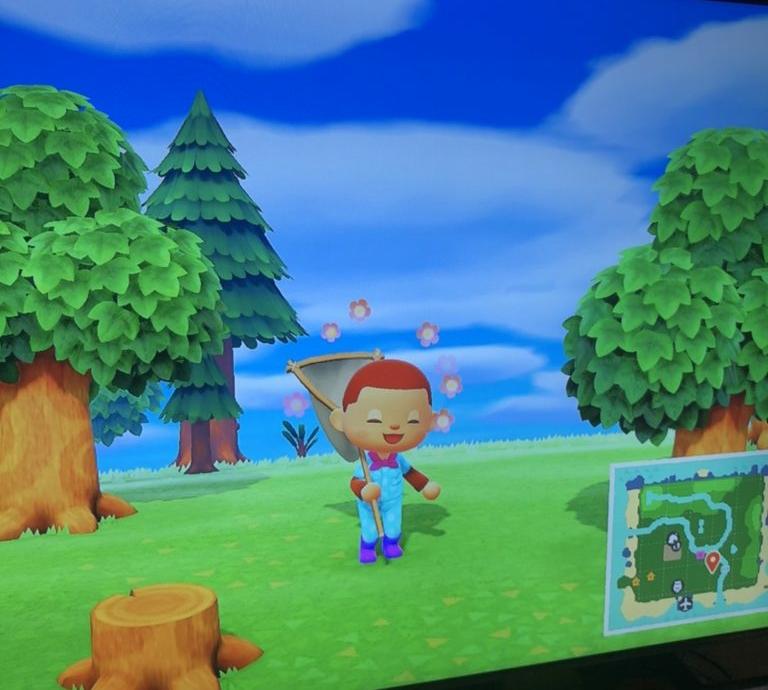 ニンテンドースイッチで、あつまれどうぶつの森をやるなの